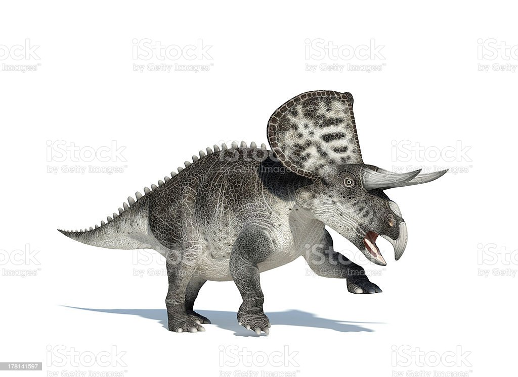 Zuniceratops on white background royalty-free stock photo