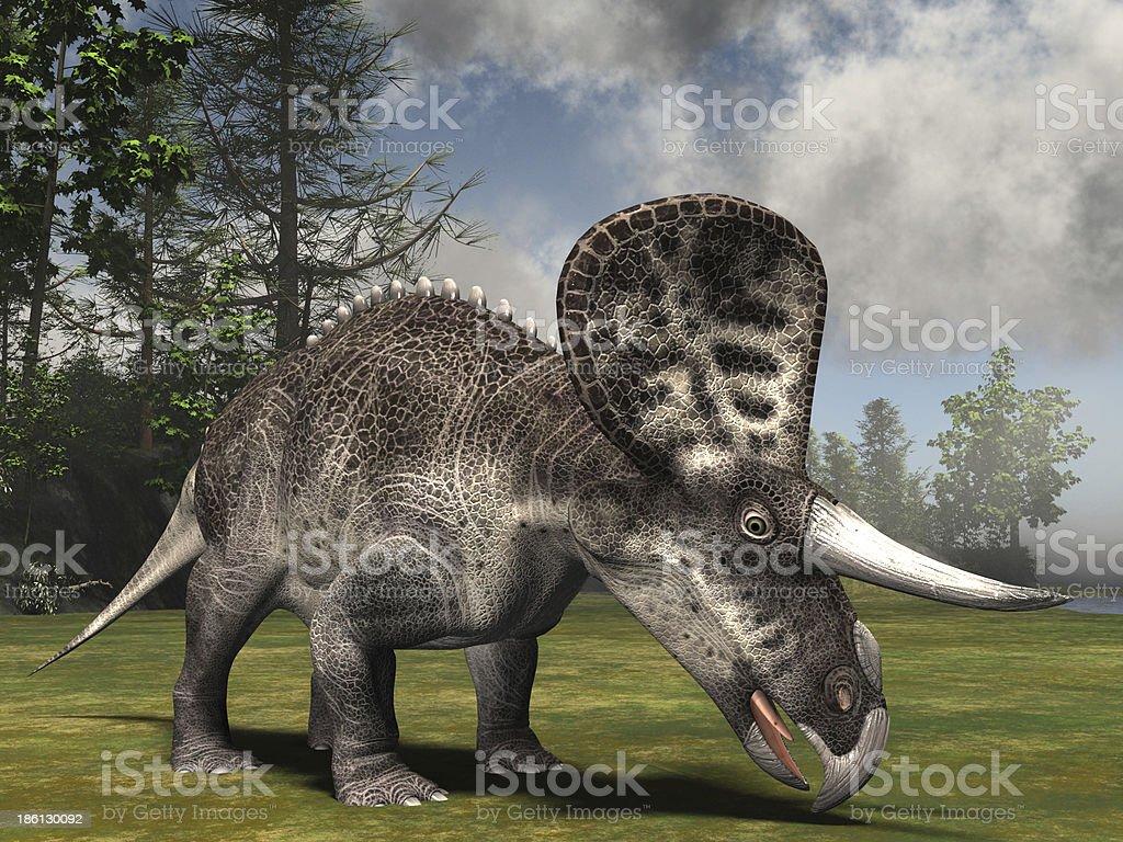 Zuniceratops royalty-free stock photo