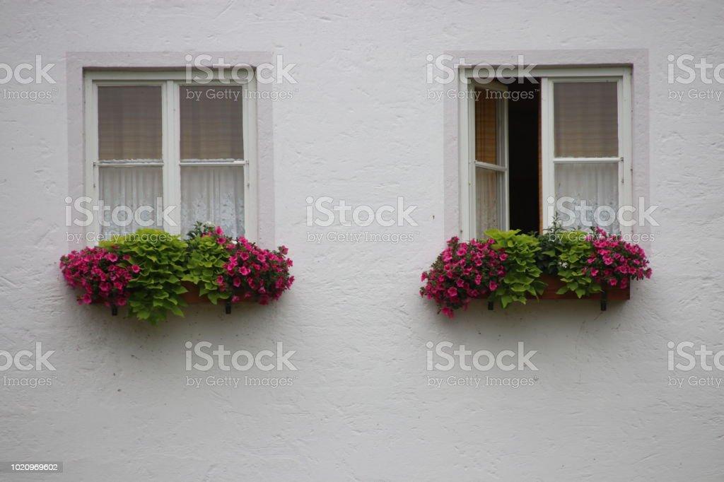 Zwei Fenster stock photo