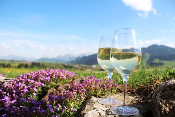 zwei weißweingläser vor alpenkulisse, romantisch mit blühendem blaukissen - regierungsbezirk schwaben stock-fotos und bilder