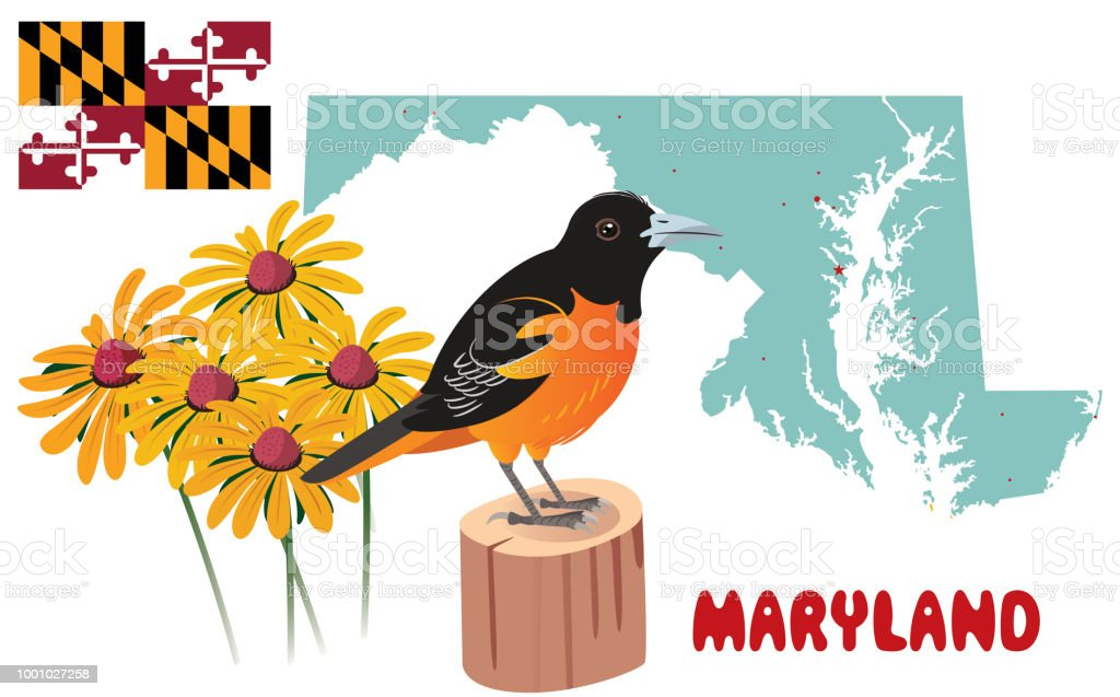 MARYLAND vector art illustration