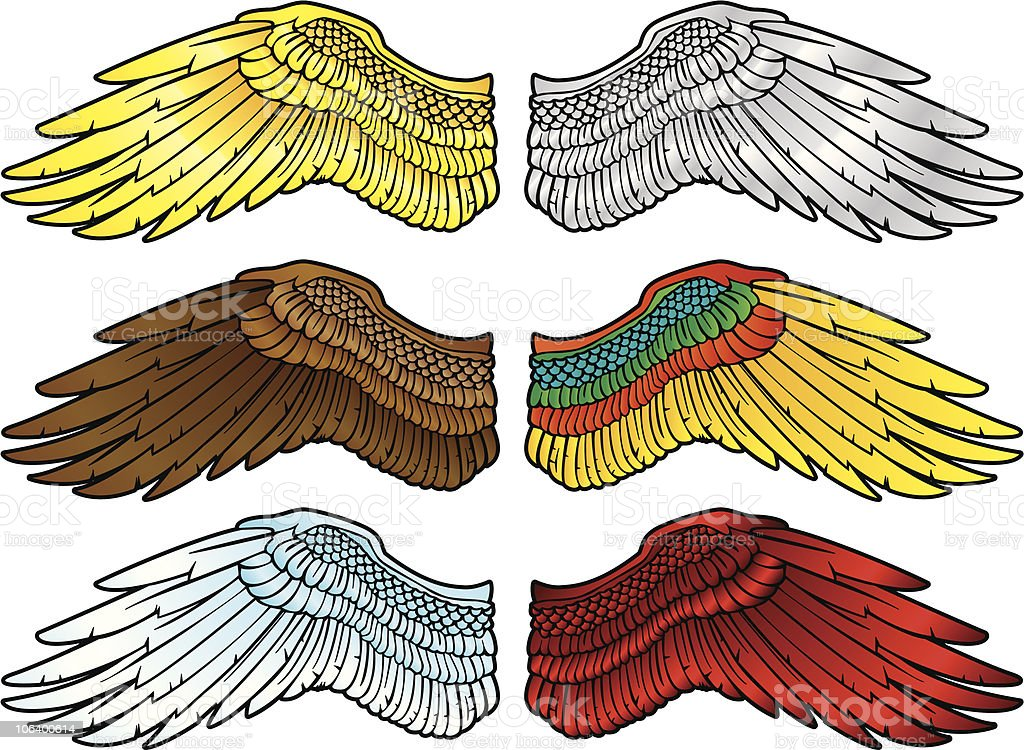 ULTRA WING royalty-free ultra wing stock vector art & more images of animal body part