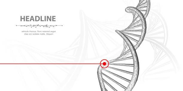 DNA. vector art illustration