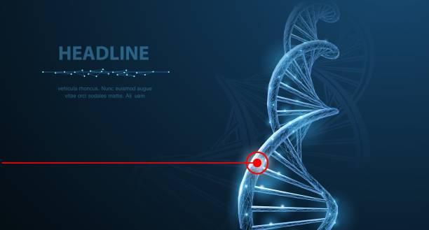 DNA.. vector art illustration