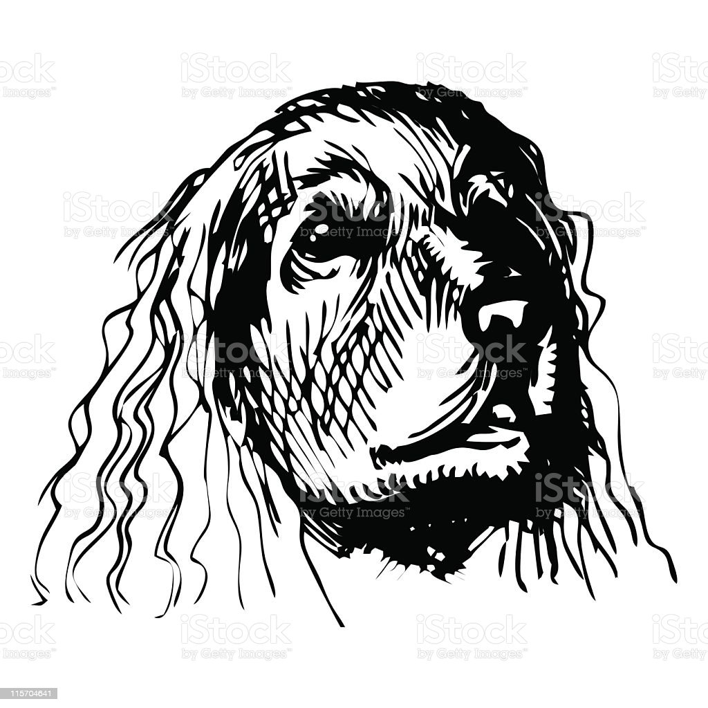 COCKER SPANIEL royalty-free stock vector art