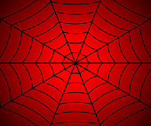 Spider web illustration, Vector cobweb