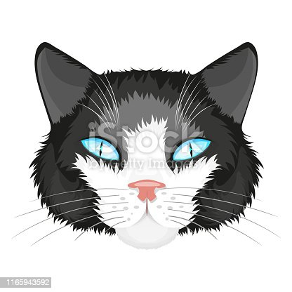 Cat print,cat graphic,cat illustration cat designcat logo