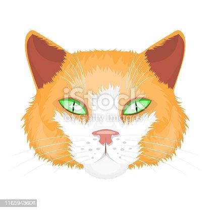 Cat print,cat graphic,cat illustration cat designcat logo