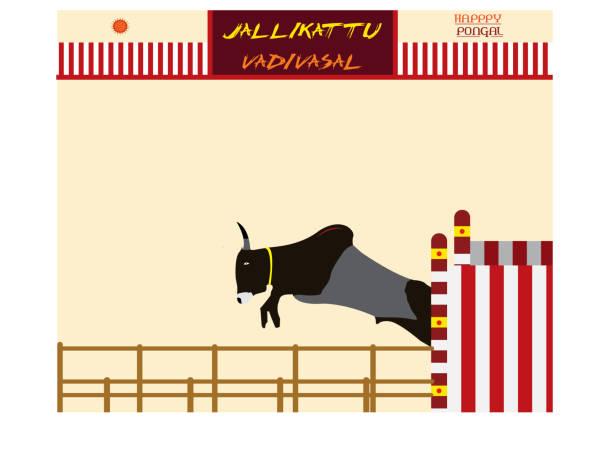jallikattu sport tamilnadu südindien vadi vasal bull taming bull sport pongal greetings illustration - madurai stock-grafiken, -clipart, -cartoons und -symbole