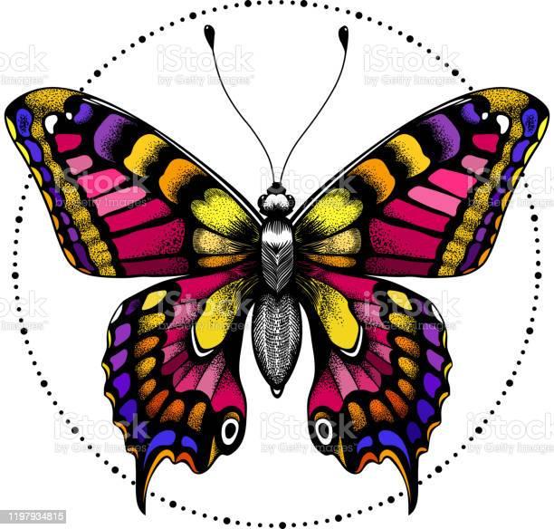 vector id1197934815?b=1&k=6&m=1197934815&s=612x612&h=dea yztzno2pcbiec th 1z0mfdg54rwdcijejzstuc=
