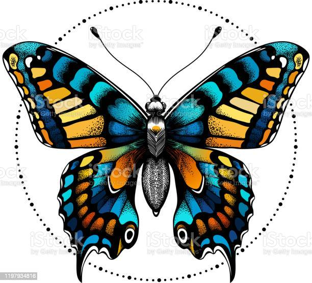 vector id1197934816?b=1&k=6&m=1197934816&s=612x612&h=jrnly6rgmf14bhdxawiiaxa8zdbjcmt3cj4ene m4ue=
