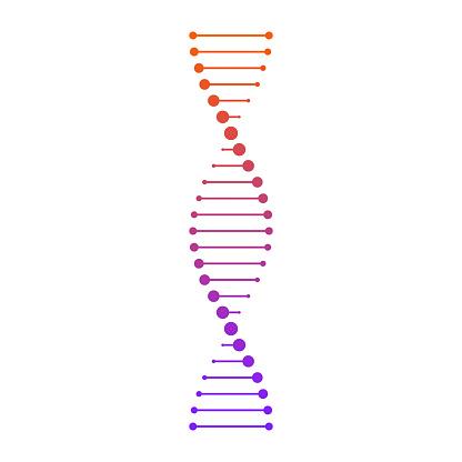 DNA_13
