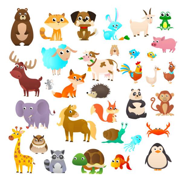 Для Интернета Big collection cartoon. Sea animals, wild animals, woodland animals. ducking stock illustrations