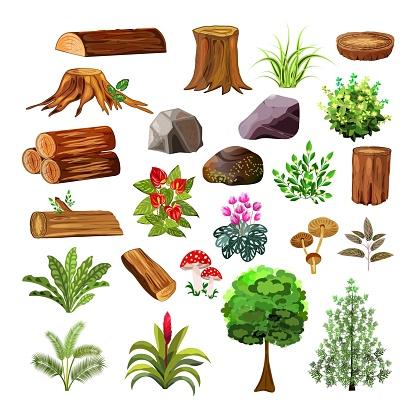 лесной наборчик