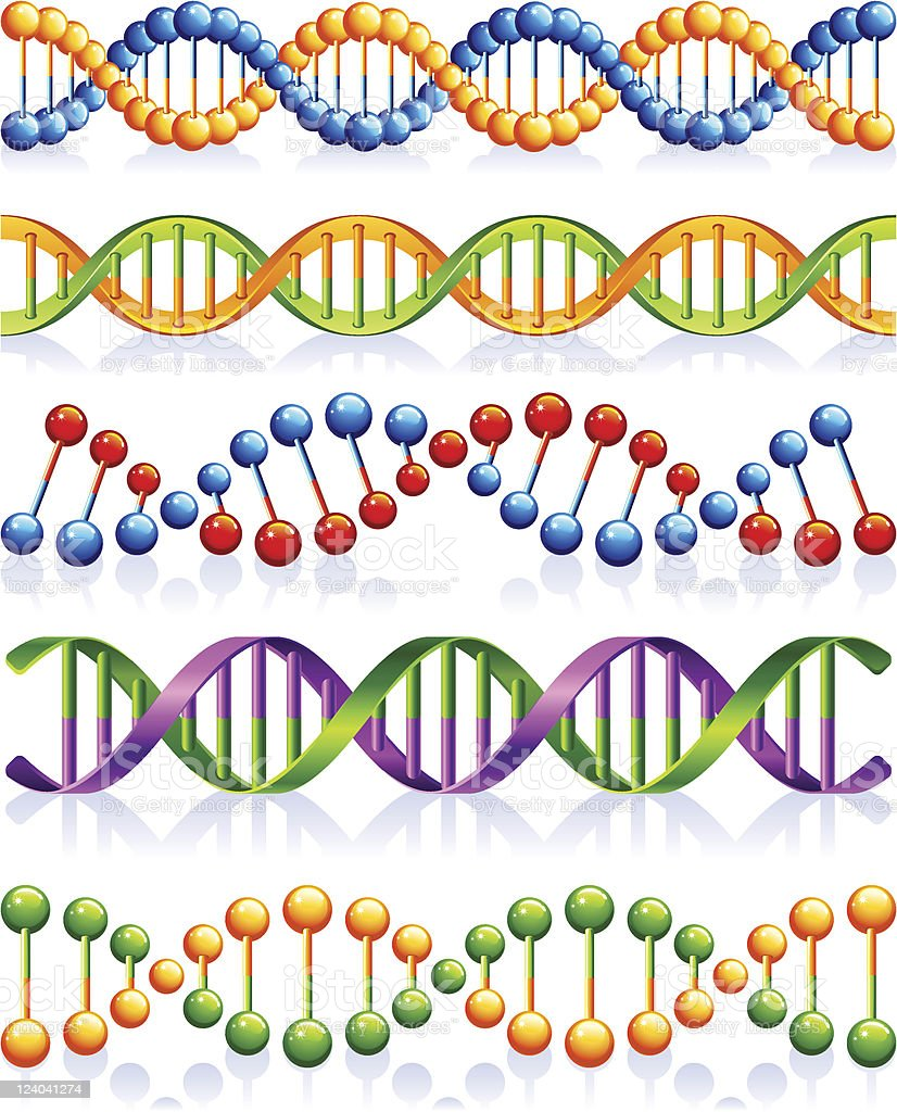 DNA royalty-free dna stock vector art & more images of biochemistry