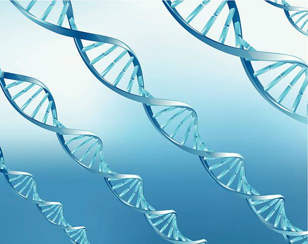 DNA – Vektorgrafik