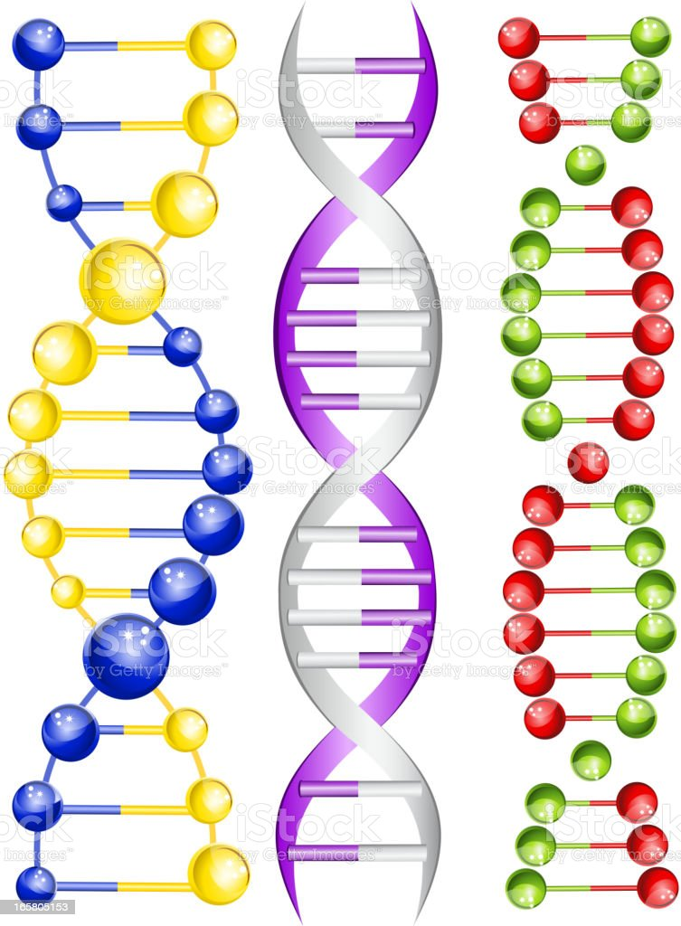 DNA royalty-free dna stock vector art & more images of atom