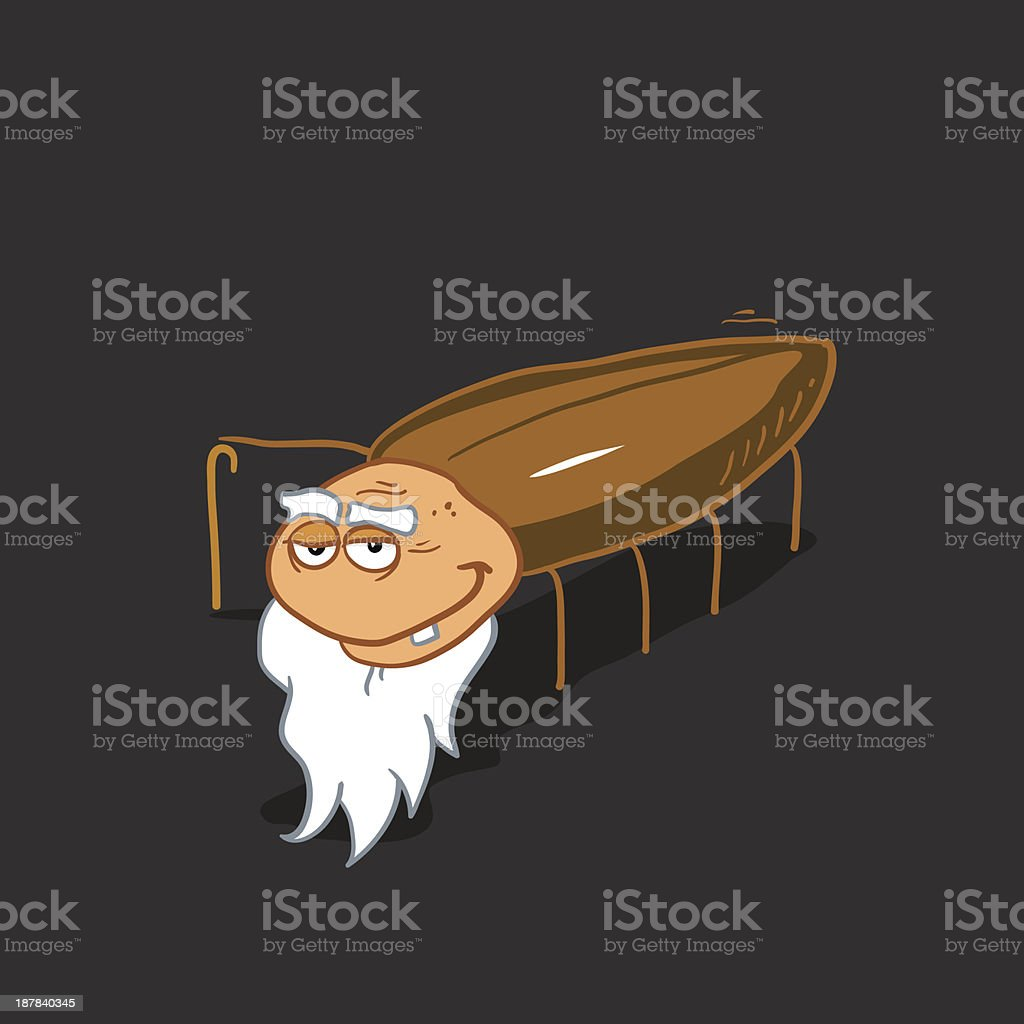 OLD COCKROACH royalty-free stock vector art