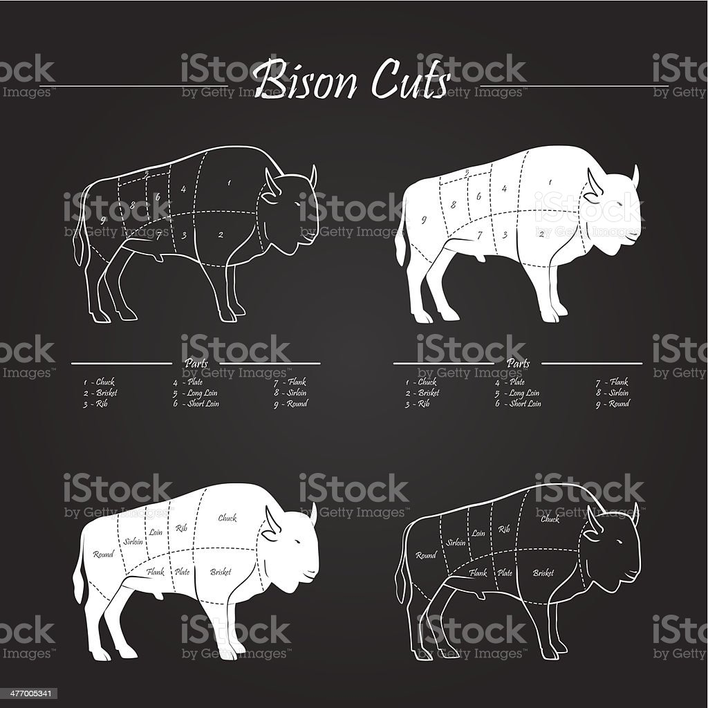 BISON MEAT CUTS SCHEME royalty-free bison meat cuts scheme stock vector art & more images of american bison