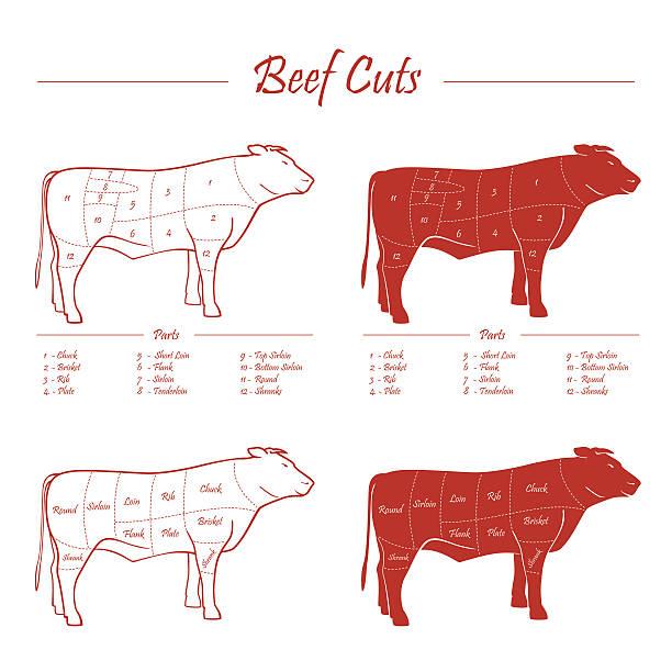 beef fleisch programm - portion stock-grafiken, -clipart, -cartoons und -symbole