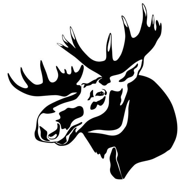 лось - moose stock illustrations