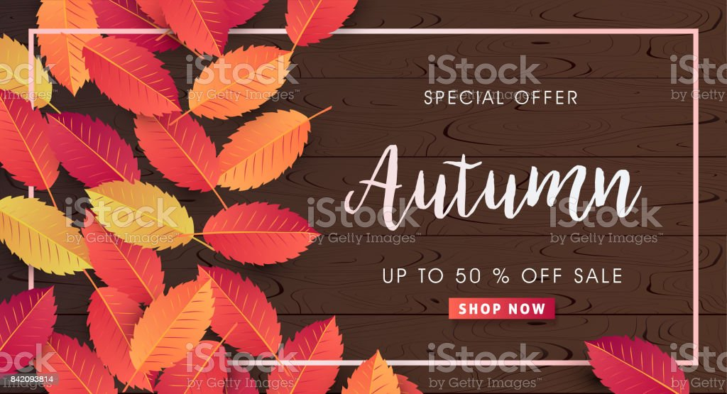 AUTUMN 24 vector art illustration