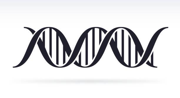 DNA DNA strand silhouette symbol. dna test stock illustrations