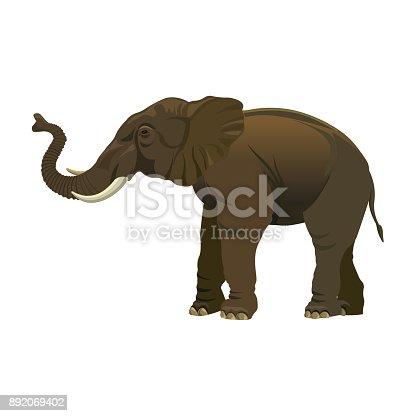 Elephant Herd Clip Art - Royalty Free - GoGraph