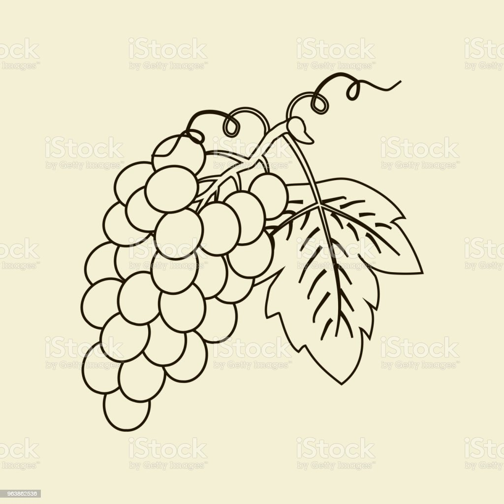 Шаблон - Royalty-free Berry stock vector