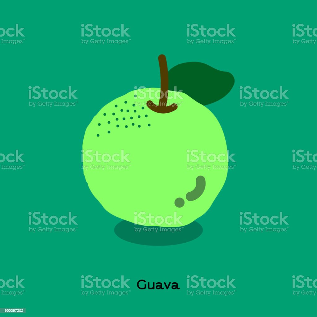 GREEN GUAVA royalty-free green guava stock vector art & more images of agriculture