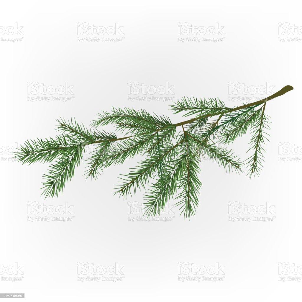01_Christmas tree branch vector art illustration