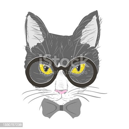 istock 1312.i012.004.P.m001.c20.hipster cats 1330757238