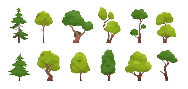 1910.m30.i010.n042.P.c25.1439415692 Cartoon tree. Simple flat forest flora, coniferous and deciduous trees, oak pine Christmas tree isolated plants. Vector set