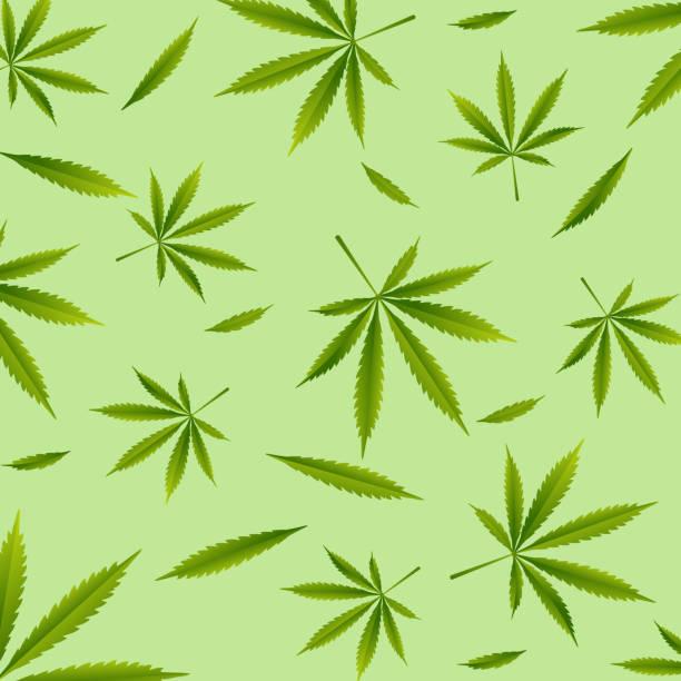 19-Cannabis leaf, master vector art illustration