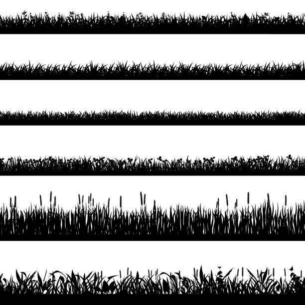 2001.m01.i010.n006.S.c15.1377596369 Realistic grass borders. Vector illustration set [преобразованный] Grass border silhouettes. Black grass silhouettes, natural environment herb borders, grass panorama. Landscape lawn elements isolated symbols set. Illustration grass border, plant summer line grass stock illustrations