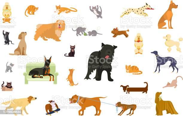 2850 cat vector id1079608834?b=1&k=6&m=1079608834&s=612x612&h=grm4v9csagykzxxeijru2zl90xdciawwyehwgaaqdo0=