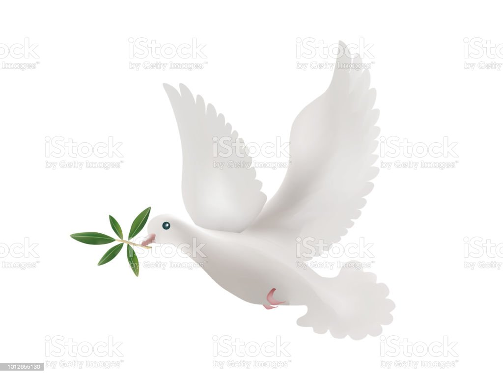 3d Illustration With Isolated Dove And Olive Leaves Symbol Of Peace