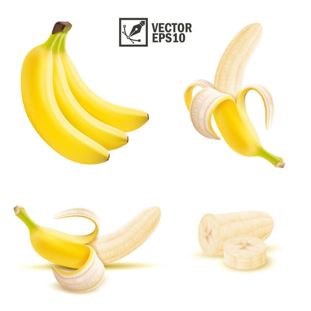 3d realistic isolated vector peeled and whole banana fruit, pieces and slices of banana 3d realistic isolated vector peeled and whole banana fruit, pieces and slices of banana banana stock illustrations