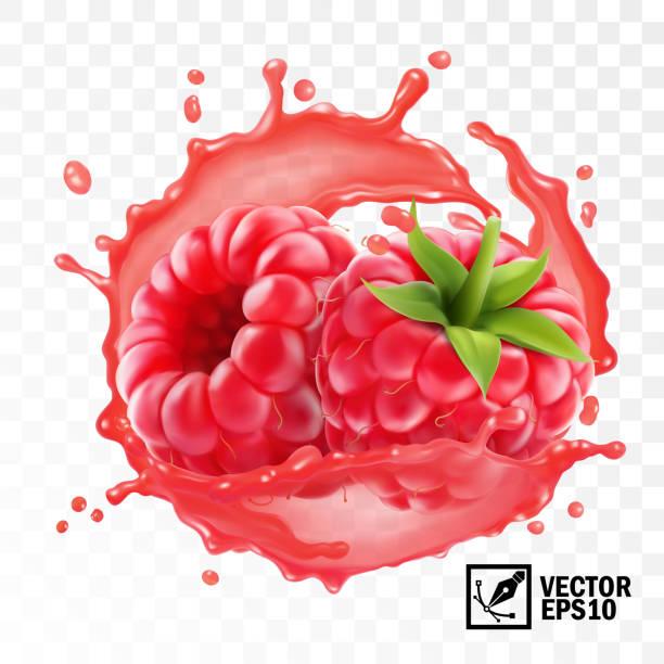bildbanksillustrationer, clip art samt tecknat material och ikoner med 3d realistisk transparent isolerad vektor, skalade hallon frukt i ett stänk av saft med droppar, ätbara handgjorda mesh - hallon