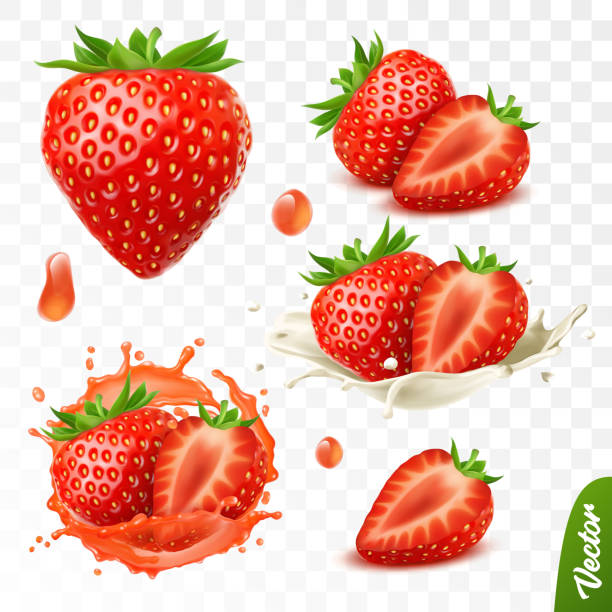illustrazioni stock, clip art, cartoni animati e icone di tendenza di 3d realistic transparent isolated vector set, whole and slice of strawberry, strawberry in a splash of juice with drops, strawberry in a splash of milk or yogurt - fragole