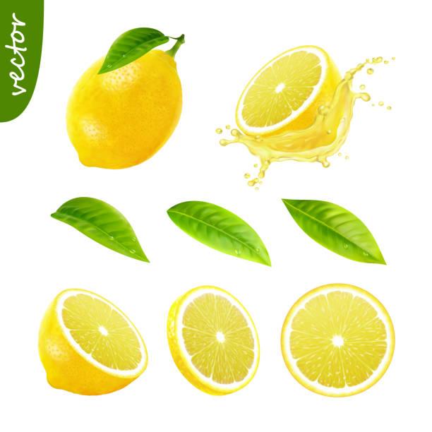 3d realistic vector set of elements (whole lemon with leaf , sliced lemon, splash lemon juice, leaves) editable handmade mesh 3d realistic vector set of elements (whole lemon with leaf , sliced lemon, splash lemon juice, leaves) editable handmade mesh fruit silhouettes stock illustrations