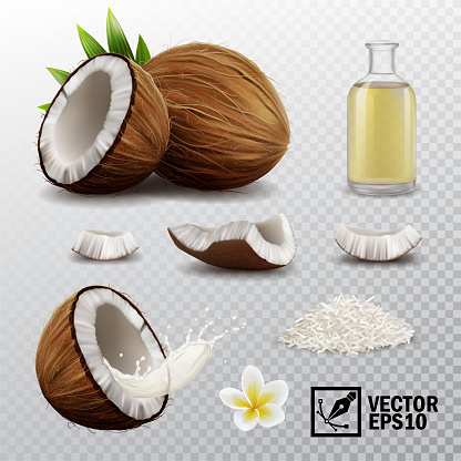 3d realistic vector set of elements (whole coconut, half coconut, coconut chips, splash coconut milk or oil, coconut chips, coconut flower, oil bottle)