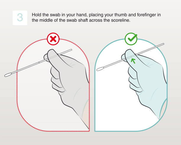 3-Hold the swab in your hand (true and false) vector art illustration