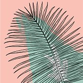 Line artwork of a palm frond with a splashy background. Easy to change colours or remove background.