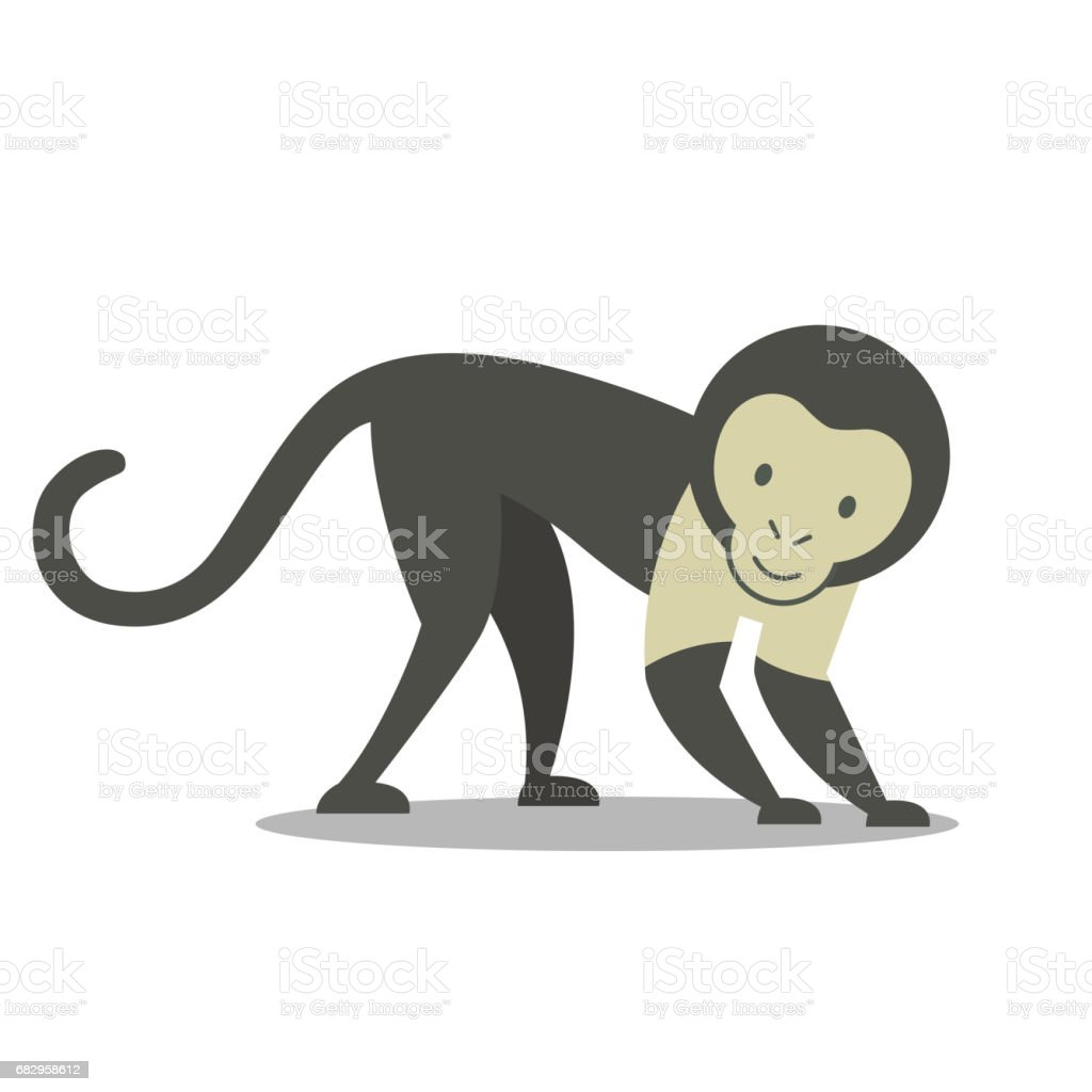 a Capuchin Monkey royalty-free a capuchin monkey stock vector art & more images of animal