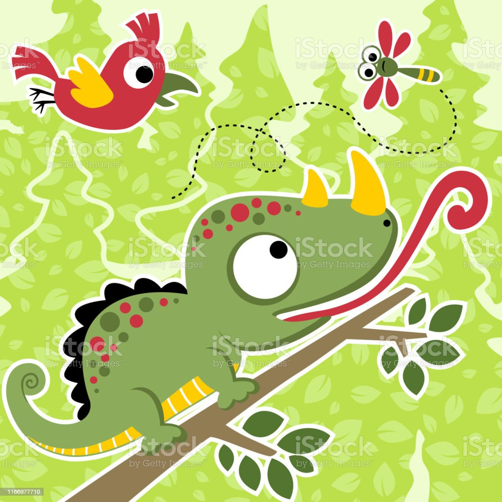 グリーンカメレオン動物hd壁紙無料ダウンロード Wallpaperbetter
