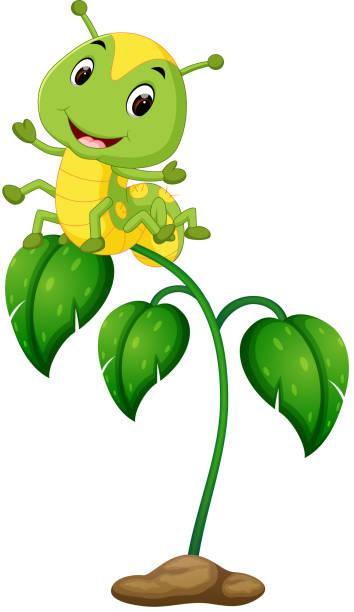 stockillustraties, clipart, cartoons en iconen met een groene plant met gelukkig rupsen - larve