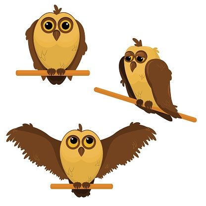 a set of vector illustrations with owls isolated on a white background