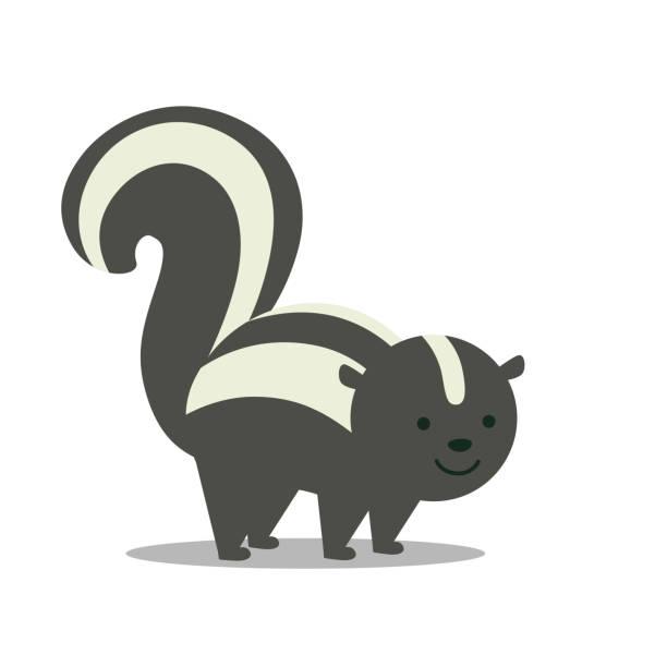 a skunk - skunk stock illustrations