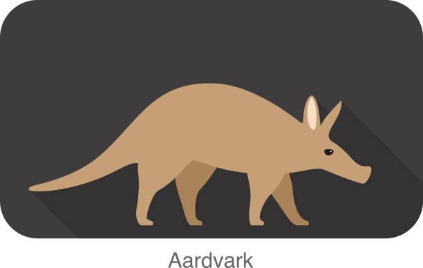 aardvark walking, side view vector - ameisenbär stock-grafiken, -clipart, -cartoons und -symbole
